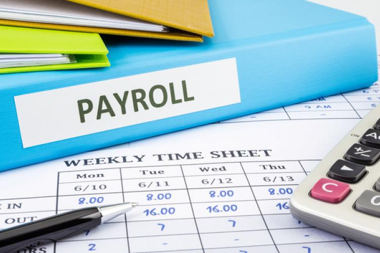 Best Payroll Services for Your Small Business | Camino Financial