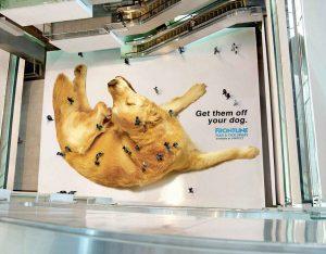 Guerrilla marketing ad, creative ad, fronline marketing, dog, fleas. Source: marketingideas101.com. Concept: guerrilla marketing