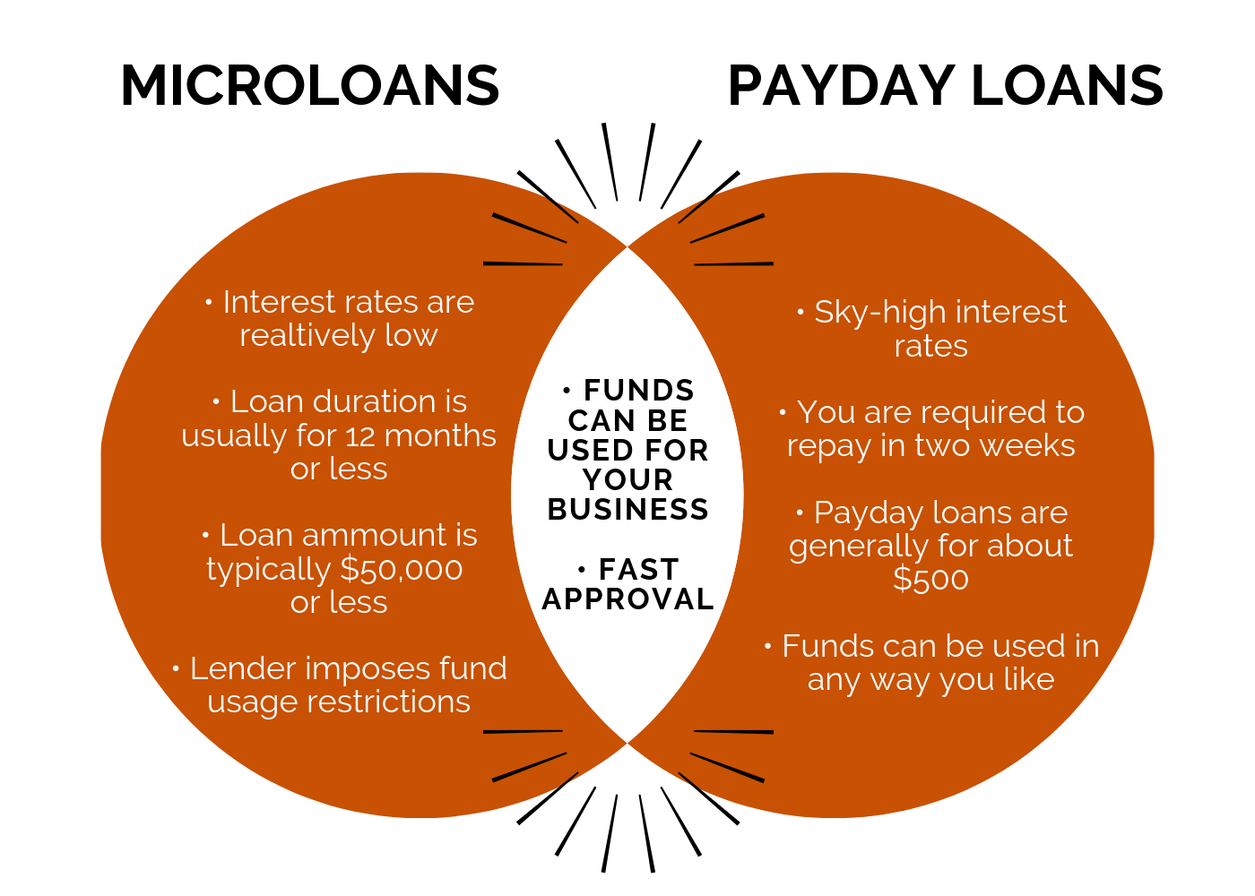 Microloan Vs. Payday Loan: Which One Do You Need? | Kingrise Finance Limited