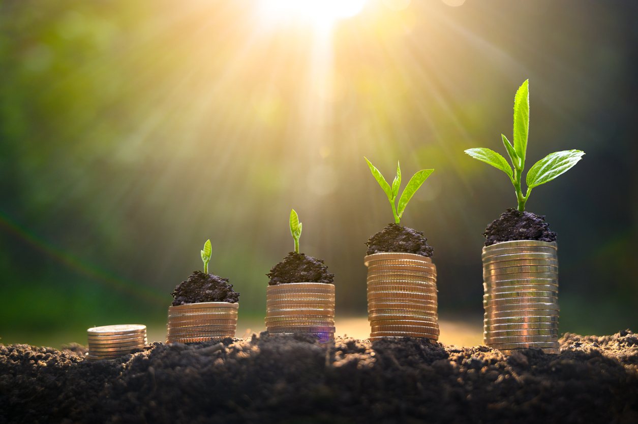 Upper tree coins to shown concept of how to invest money to grow your business