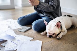 woman and dog on floor with multiple debts. Concept: Debt consolidation vs debt settlement