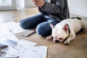 Mujer y perro en el suelo sobre el que hay múltiples deudas. Concepto: Liquidación de deuda o consolidación de deuda