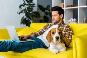 Entrepreneur with laptop in living room. Concept: Home office tax deduction