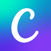 canva, business apps