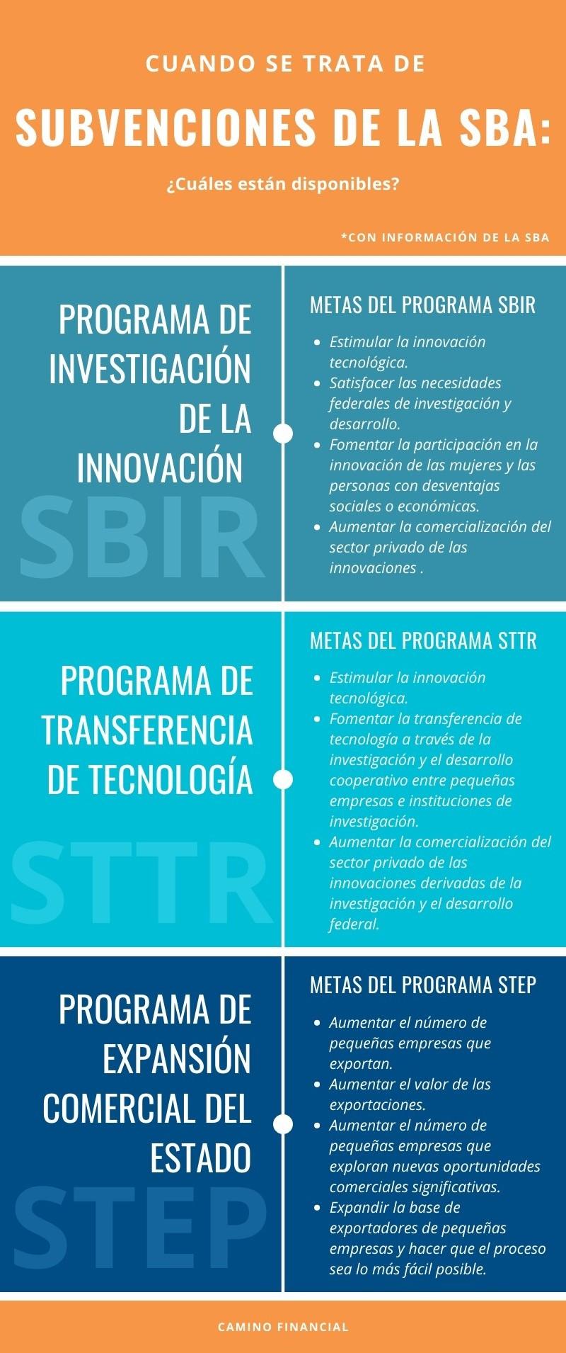 Subvenciones de la SBA, infografía, Camino Financial