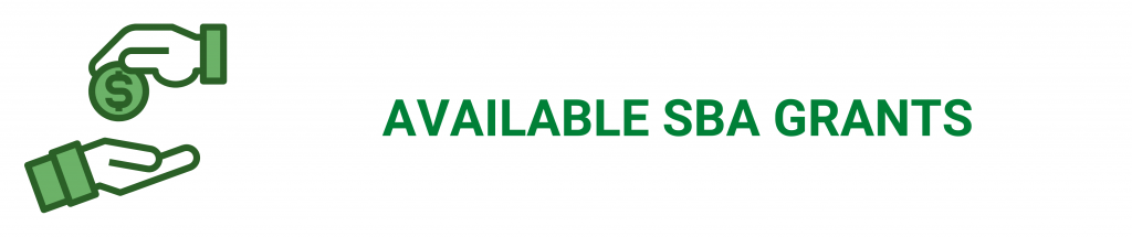 SBA grants, camino financial