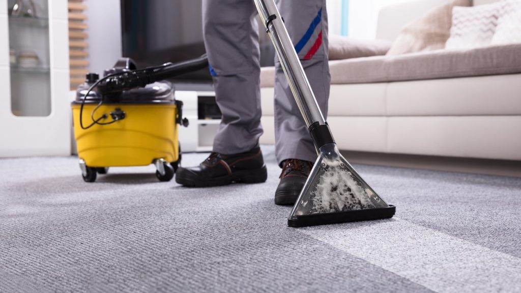 Low Section Of A Person Cleaning The Carpet With Vacuum Cleaner In Living Room. concept: cleaning business