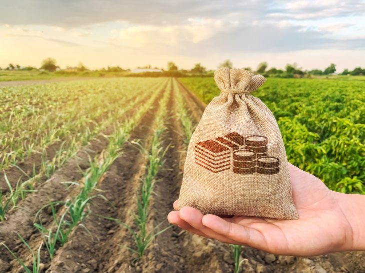 The farmer holds a money bag on the background of plantations. Lending and subsidizing farmers. Grants and support. Profit from agribusiness. Land value and rent. Taxes taxation. Agricultural startups. concept: Small Farm Loans