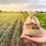 Préstmaos para granjas