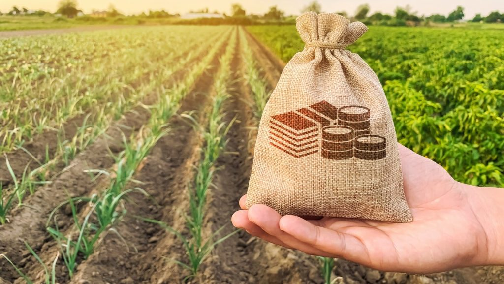 The farmer holds a money bag on the background of plantations. Lending and subsidizing farmers. Grants and support. Profit from agribusiness. Land value and rent. Taxes taxation. Agricultural startups. concept: farm financing