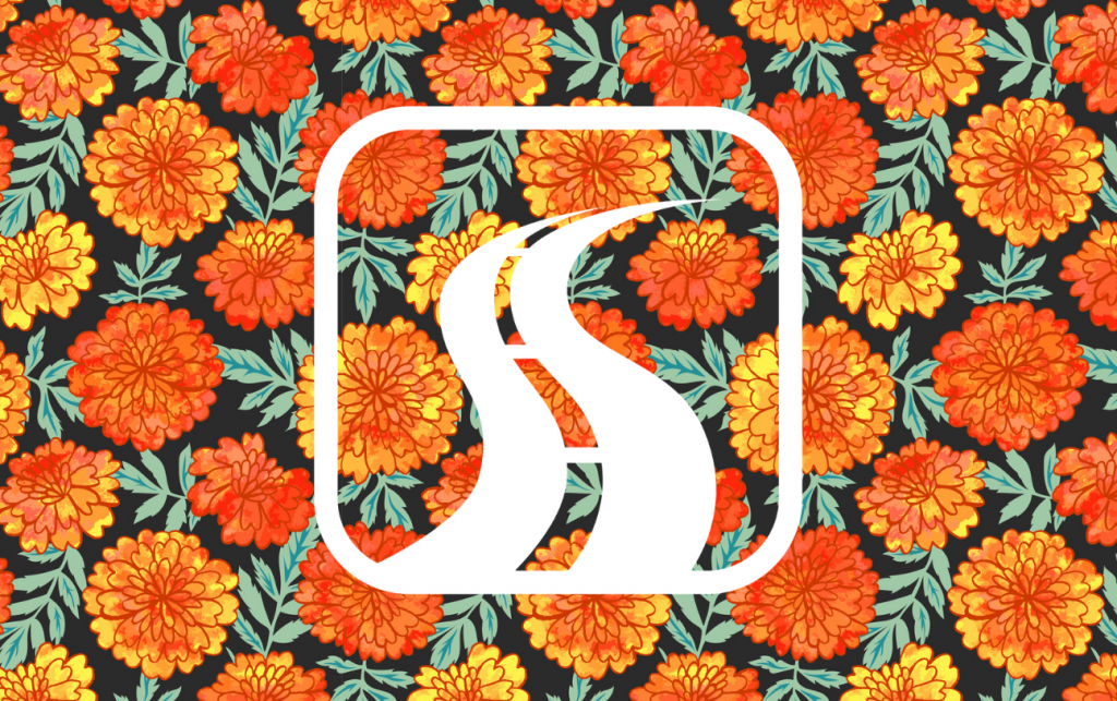 Vector seamless with bright hand drawn marigolds with watercolor texture. Perfect for textile for Mexican traditional holiday Day of the dead or for Indian holiday Diwali. concept: dia de muertos